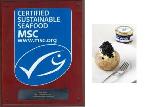 ARËNKHA MSC* received the award for most innovative product MSC 2012.