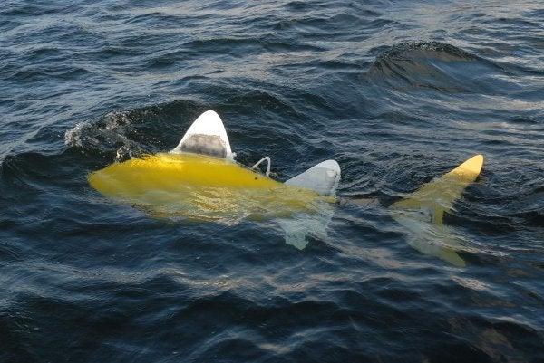 SHOAL robotic fish